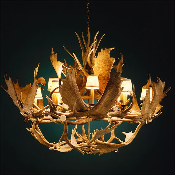 Antler Chandeliers 42 to 50 Inches