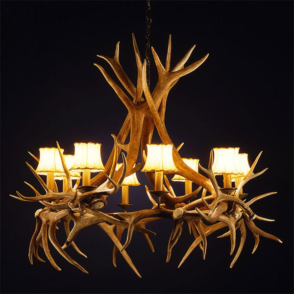 Antler Chandeliers 54 to 60 Inches